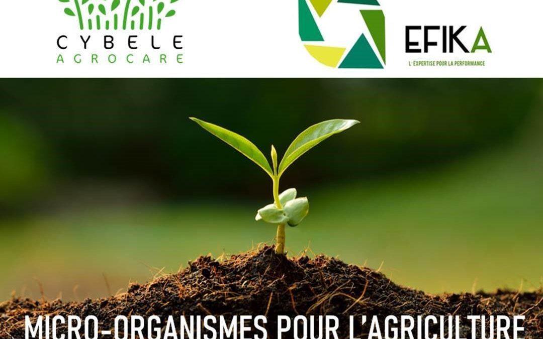 Nouveau partenariat pour Cybèle Agrocare